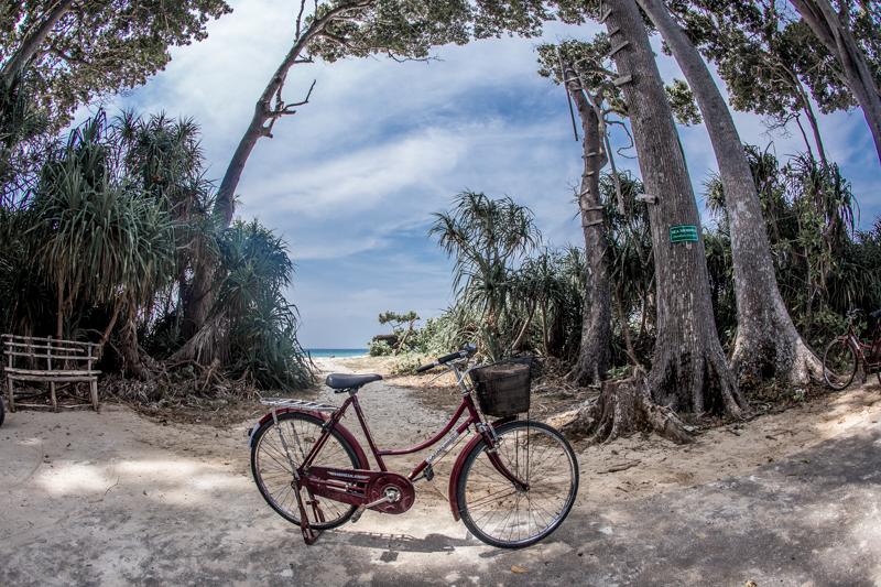 L'île se visite en 3h à vélo, et les cadenas ne sont pas nécessaires, Neil Island © 2016 Jessica VALOISE